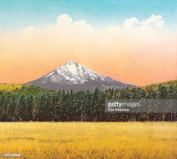 mountain scene - wilderness stock illustrations