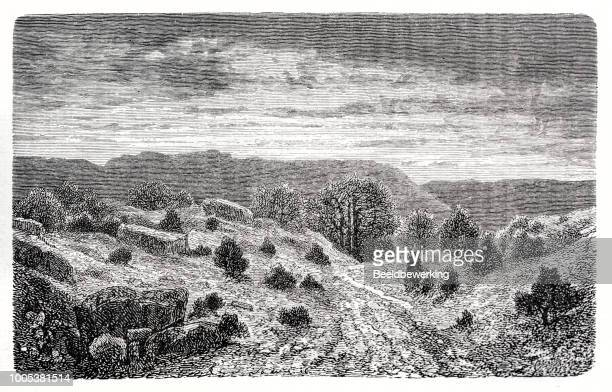 mountains eroded by the rain showing bare rocks - 1887 stock illustrations, clip art, cartoons, & icons
