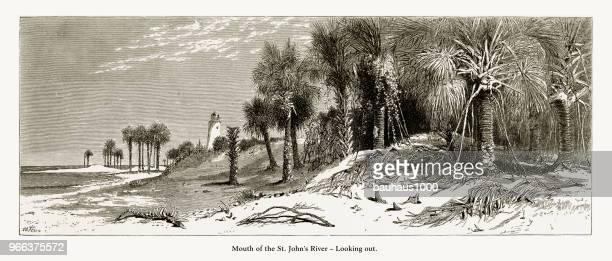 フロリダ州、アメリカ合衆国アメリカ ビクトリア朝彫刻、1872 外を見て聖ジョンズ川の河口 - 1870~1879年点のイラスト素材/クリップアート素材/マンガ素材/アイコン素材