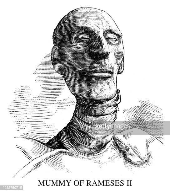mummy of  rameses ii - north african ethnicity stock illustrations, clip art, cartoons, & icons