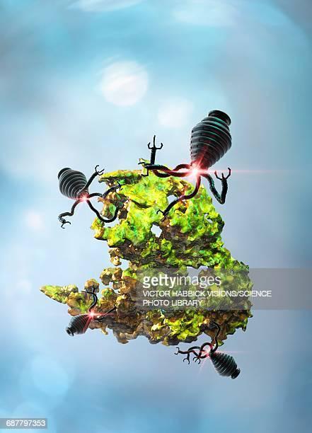 nanobots attacking cancer cell, illustration - victor habbick stock illustrations