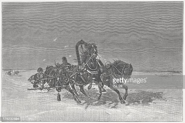 Napoleon's return from Russia in 1812, wood engraving, published 1882