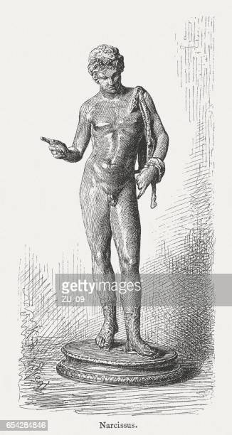 narcissus, or dionysus, ancient bronze statue, naples, italy, published 1884 - narcissus mythological character stock illustrations, clip art, cartoons, & icons