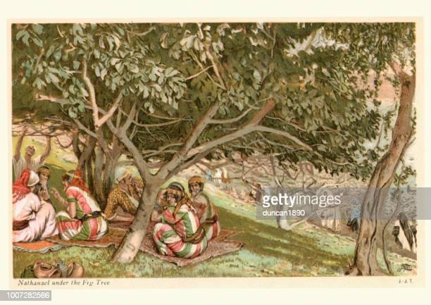 nathanael under the fig tree - fig tree stock illustrations