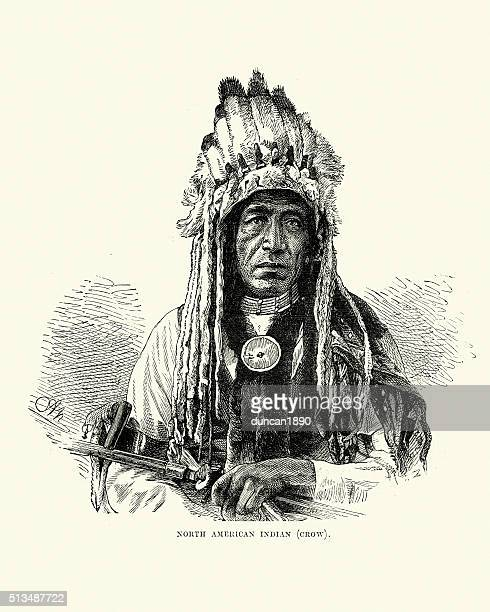 native american of the crow tribe, 19th century - indigenous north american culture stock illustrations, clip art, cartoons, & icons
