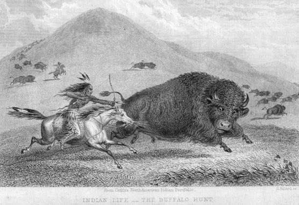 Buffalo And Arrow Wall Art