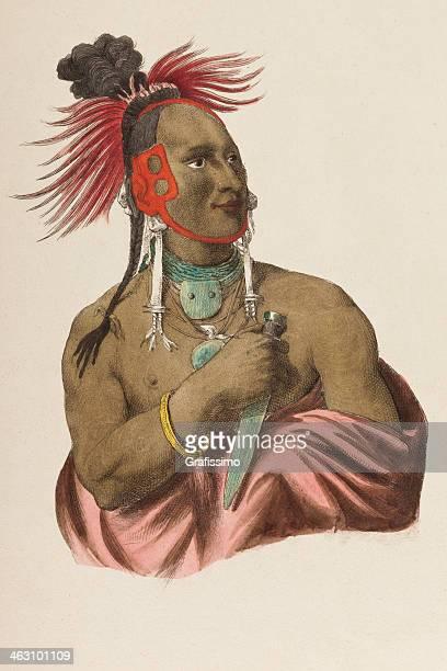 ilustraciones, imágenes clip art, dibujos animados e iconos de stock de native tribal americana jefe de 1849 - indios americanos sioux