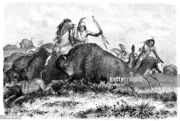 native americans hunting buffalos with bow and arrow 1862 - cherokee culture stock illustrations, clip art, cartoons, & icons