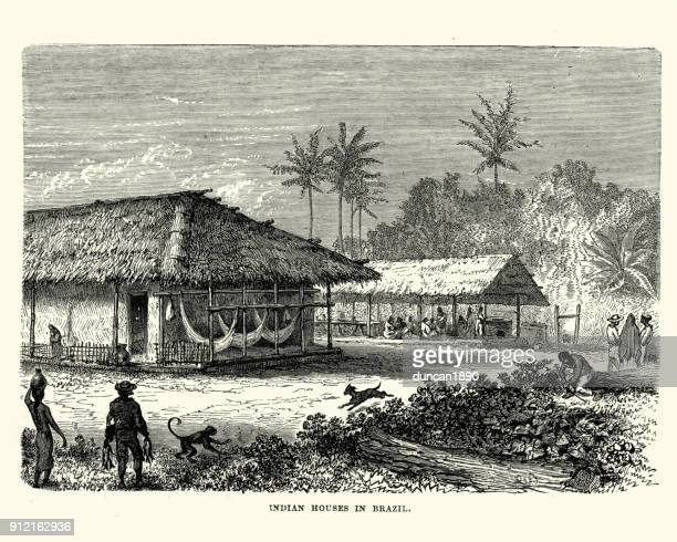 Native Indian Houses In Brazil 19th Century