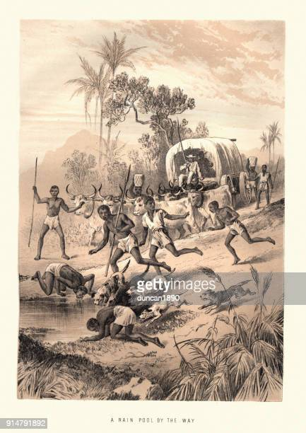 natives drinking from a pool of rain water, africa - dehydration stock illustrations, clip art, cartoons, & icons