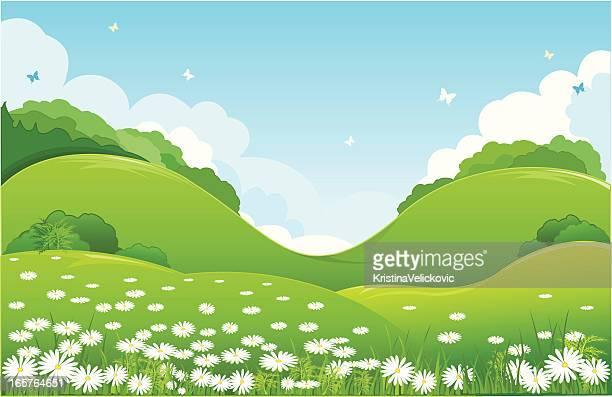 nature - hill stock illustrations