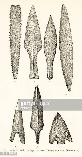 illustrazioni stock, clip art, cartoni animati e icone di tendenza di neolithic flint lance and arrowheads from denmark - paleolitico