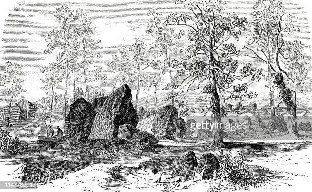 neolithic megalithic graves-the groom at visbek - neolithic stock illustrations, clip art, cartoons, & icons