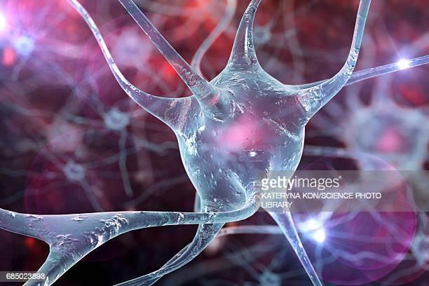 nerve cells, illustration - nerve cell stock illustrations