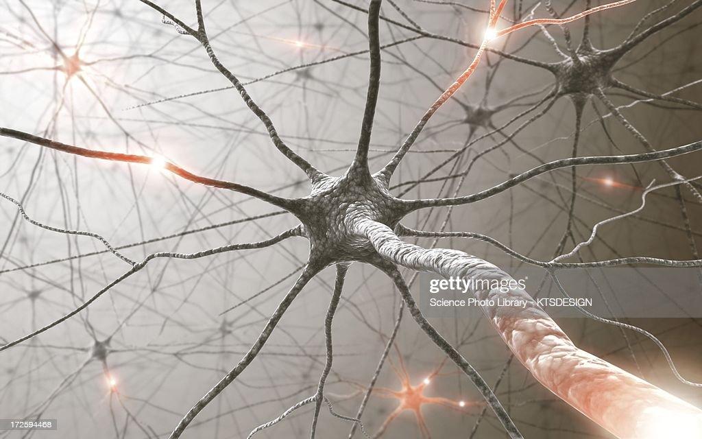 Neural network, artwork : Illustration