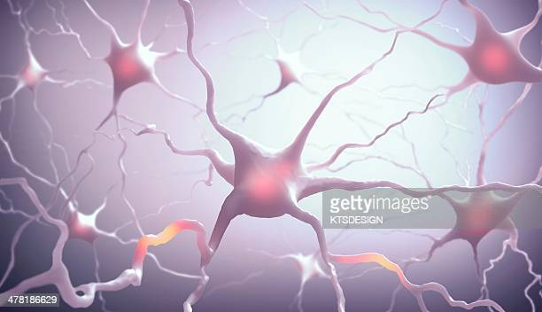 neural network, artwork - synapse stock illustrations