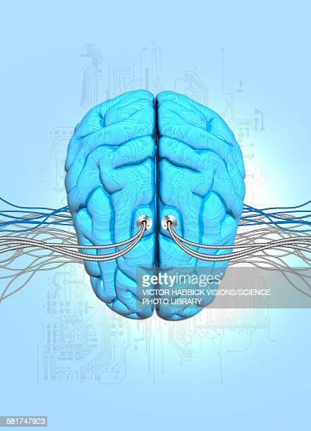 neuromorphic engineering, illustration - victor habbick stock illustrations