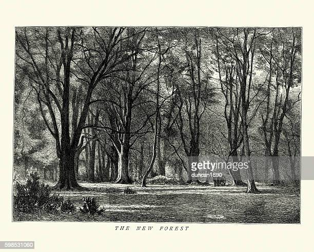 New Forest, England, 1875