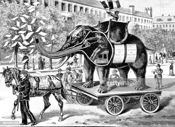 ilustraciones, imágenes clip art, dibujos animados e iconos de stock de un anuncio nuevo de la calle en forma de un elefante - caballo familia del caballo