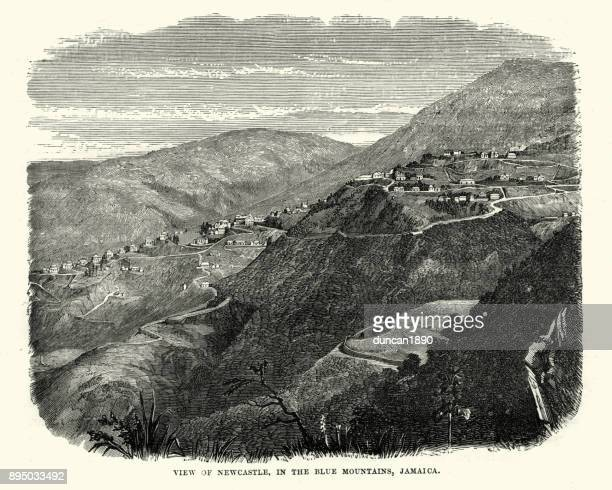 newcastle, in the blue mountains,  jamaica, 19th century - jamaican culture stock illustrations, clip art, cartoons, & icons