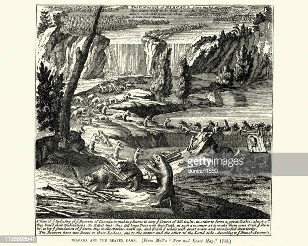 niagara and beaver dams, early 18th century - niagara river stock illustrations