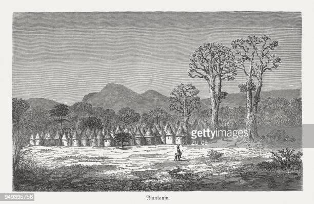 niantanso, village in south-western mali, wood engraving, published in 1868 - mali stock illustrations, clip art, cartoons, & icons
