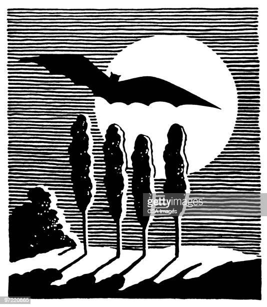 night scene - spooky stock illustrations