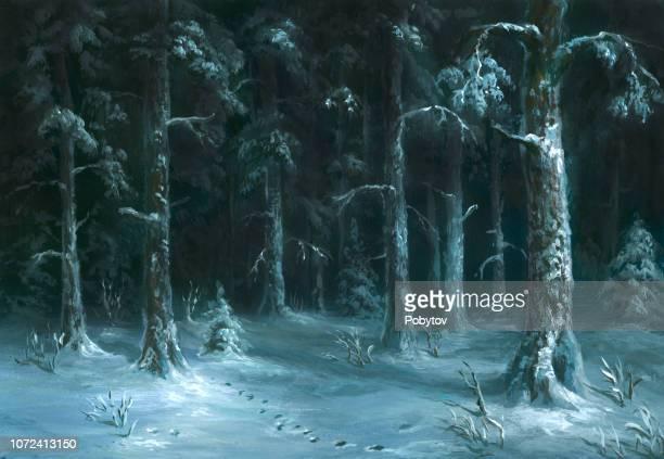 night winter forest - woodland stock illustrations