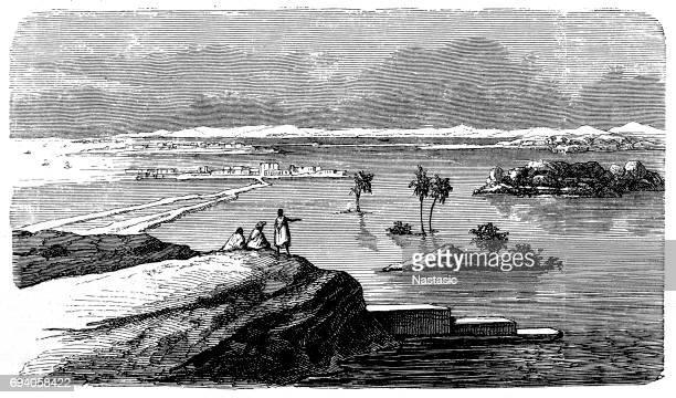 nile flood - nile river stock illustrations, clip art, cartoons, & icons