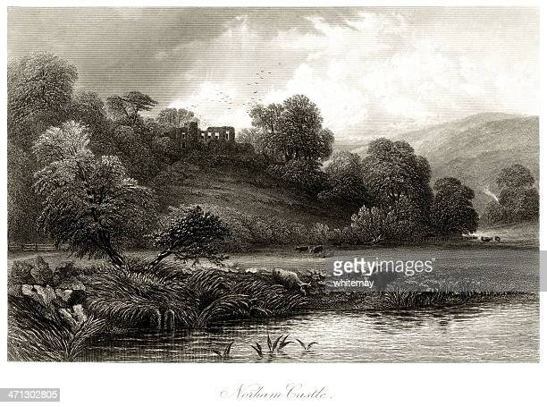 norham castle and the river tweed - northumberland stock illustrations, clip art, cartoons, & icons