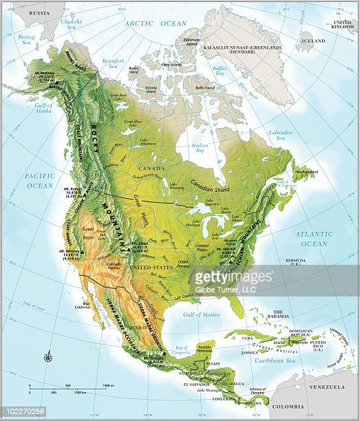 North America continent map, relief