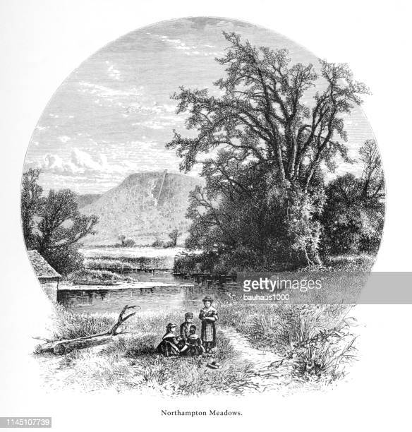 northampton meadows, connecticut river, valley of the connecticut, massachusetts, united states, american victorian engraving, 1872 - connecticut river stock illustrations, clip art, cartoons, & icons