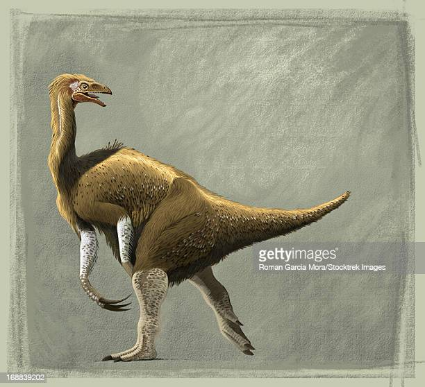 Nothronychus mckinleyi from New Mexico during the Turonian stage of the Late Cretaceous Period.