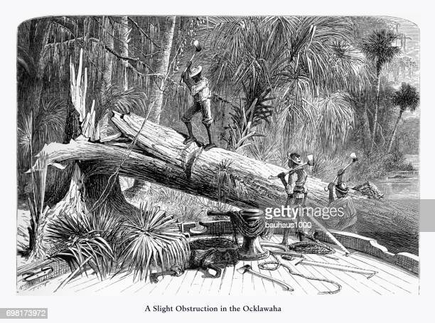 Obstruction on the Ocklawaha River, Florida Swamp, Florida, United States, American Victorian Engraving, 1872