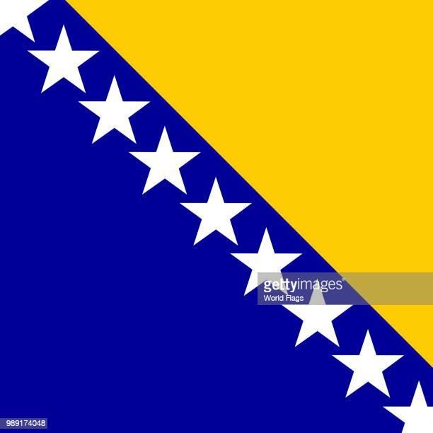 official national flag of bosnia and herzegovina - balkans stock illustrations, clip art, cartoons, & icons