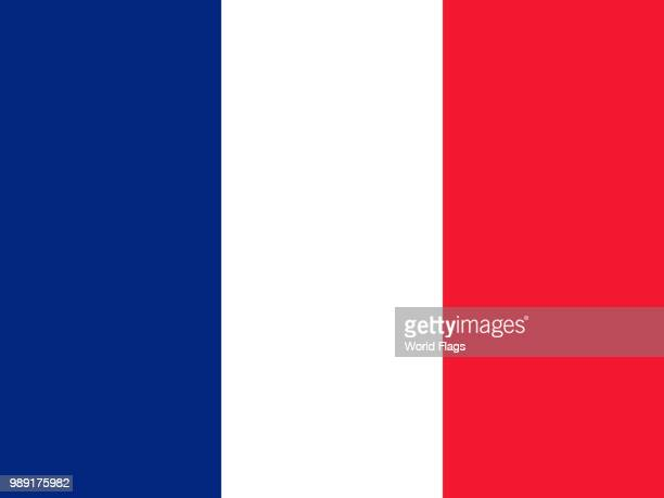 official national flag of martinique - martinique stock illustrations
