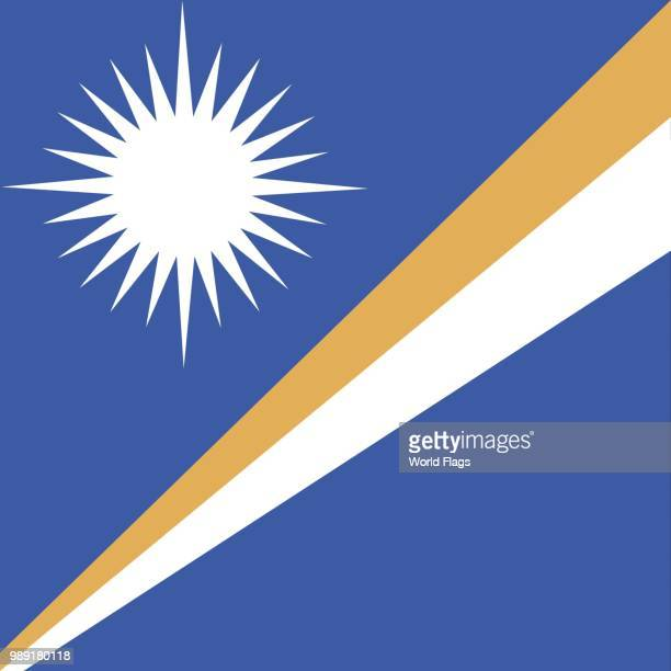 official national flag of the marshall islands - marshall islands stock illustrations, clip art, cartoons, & icons