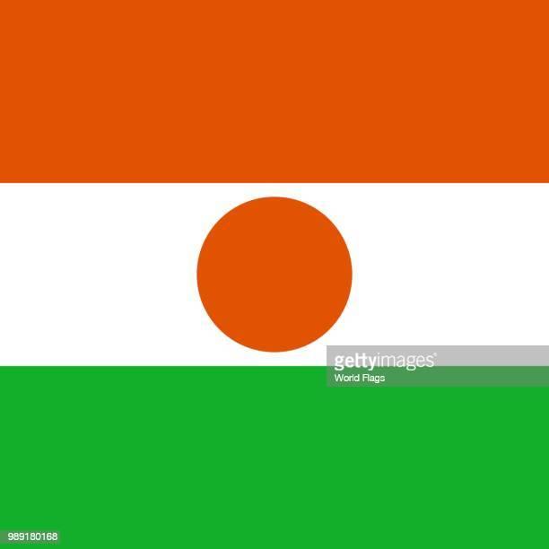 ilustrações, clipart, desenhos animados e ícones de official national flag of the niger - níger