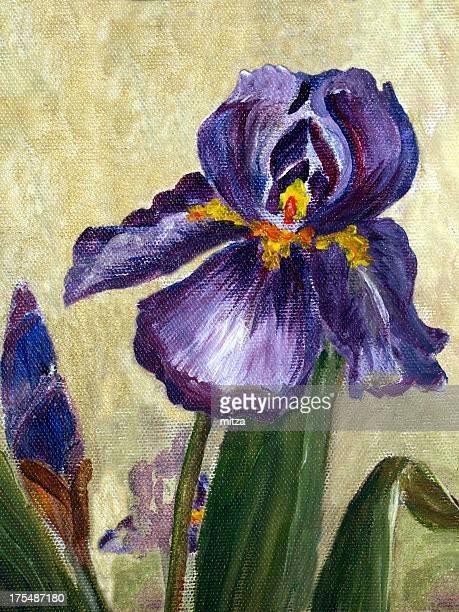 Oil painted canvas iris flower