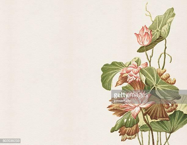 Ilustraciones De Stock Y Dibujos De Flores Japonesas