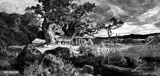 old germanic court under a huge tree - paleolitico stock illustrations