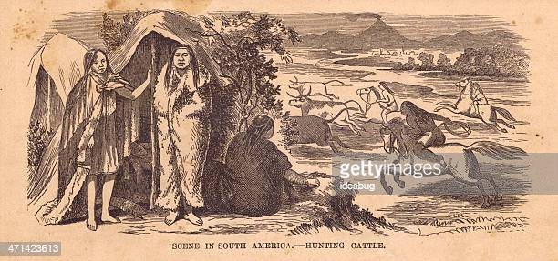 Old Illustration of Hunting Cattle in South America, 1800's