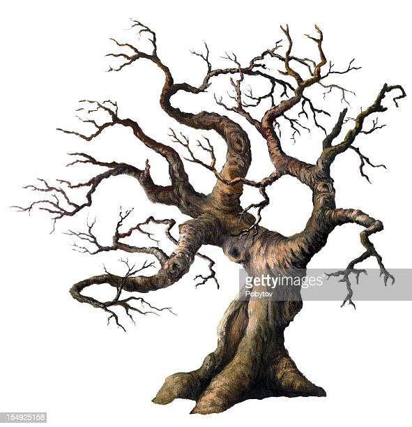 old oak - tree trunk stock illustrations, clip art, cartoons, & icons