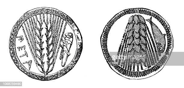 ilustraciones, imágenes clip art, dibujos animados e iconos de stock de monedas antiguas del sur de italia con una oreja de trigo y un saltamontes - espiga de trigo