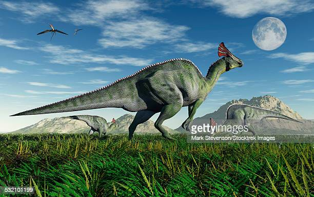 Olorotitan duckbill dinosaurs from the Cretaceous Period, in what is modern day Russia.