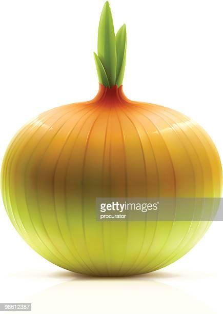 onion - husk stock illustrations, clip art, cartoons, & icons