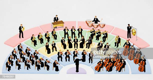orchestra, instrumental ensemble arranged with percussion, string, brass, and woodwind sections, with conductor, elevated view - orchestra stock illustrations, clip art, cartoons, & icons