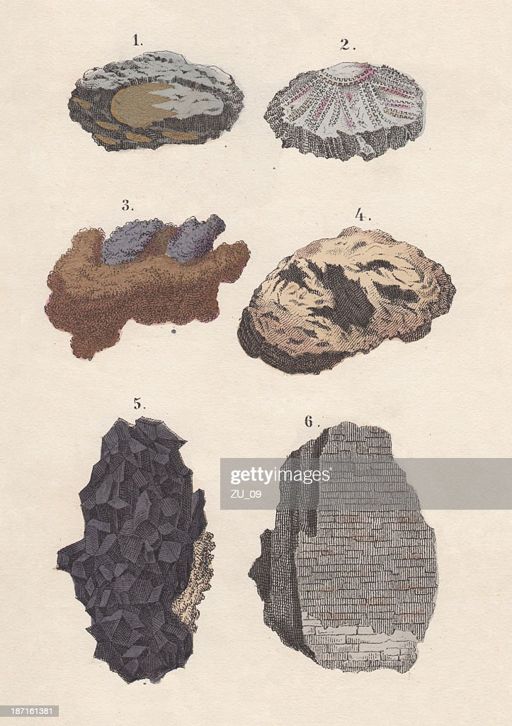 Ores: gold, silver, copper, iron, tin, potter's, hand-coloured lithograph, 1880 : stock illustration