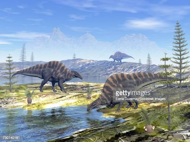 ouranosaurus dinosaurs looking for water. - hadrosaurid stock illustrations, clip art, cartoons, & icons