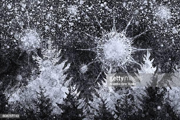 overnight snowfall above winter pine trees - digital composite stock illustrations